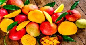 Mango Life – todo lo que debes saber 2020